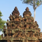 Angkor – oder: wo ist Angelina?